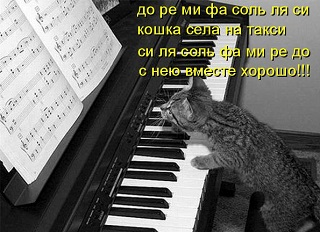 Cat playing on piano.jpg