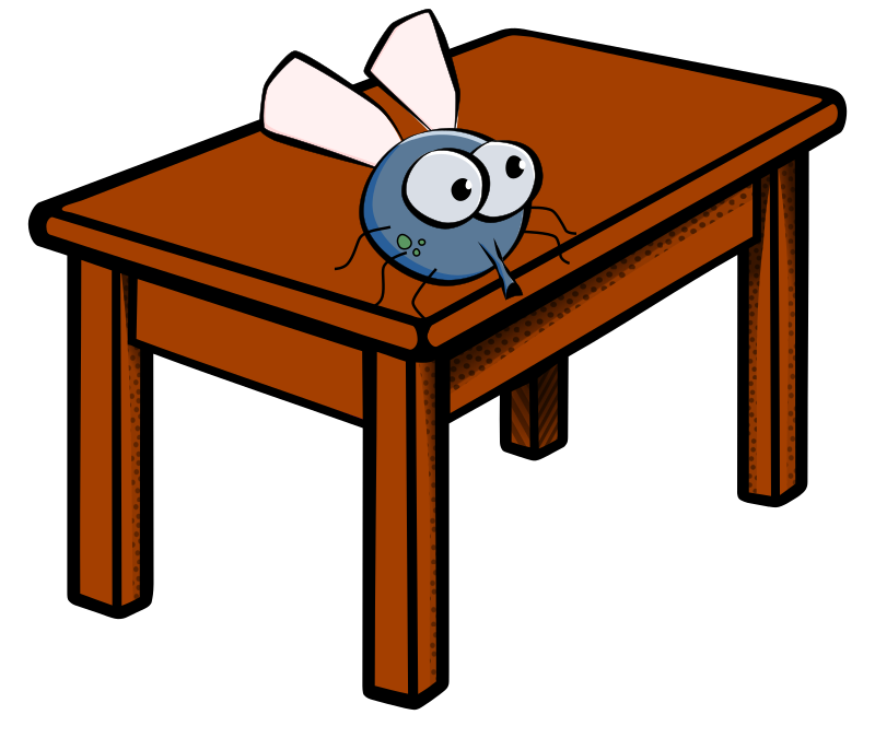 Fly-on-a-table.png